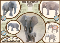 Eurographics Jigsaw Puzzles - The Elephant