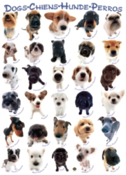 Eurographics Jigsaw Puzzles - Dogs