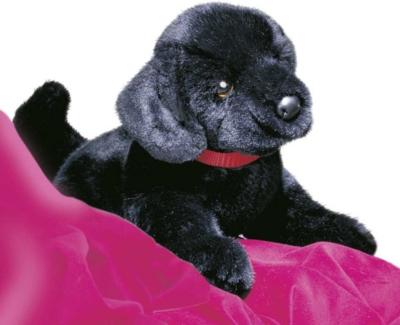 Hopper Black Lab - 13'' Dog By Douglas Cuddle Toys