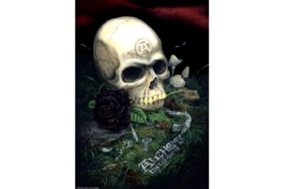 Gothic: Rose - 1000pc Jigsaw Puzzle by Heye