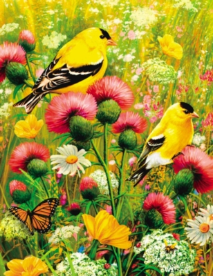 Springbok Jigsaw Puzzles - Goldfinch - Large